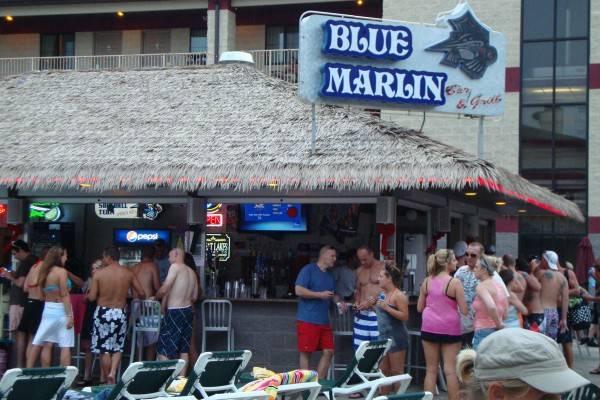 bluemarlin